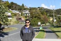 Residential Area, Paihia