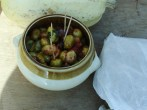 degustation de bon sens octobre 2013 namur (28)
