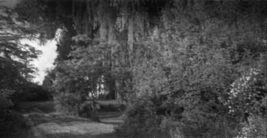 Film - 617 - 700