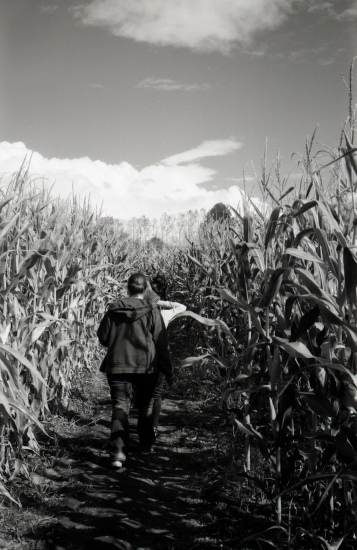 The children of the corn... maze.