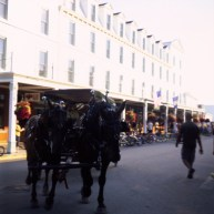 Anyone been on Mackinac Island would know, no motorized vehicle allowed. Except emergency vehicles. This one is on main street.