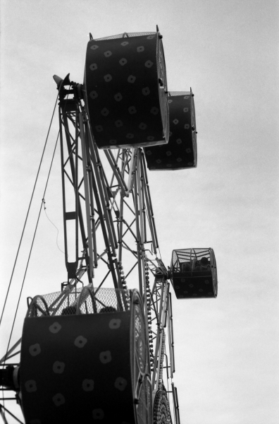 Film - 556