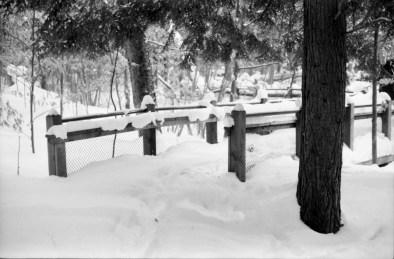 We still go for walks in Michigan in winter.