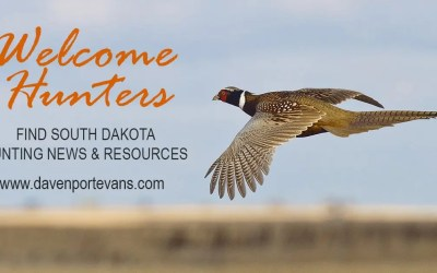 Find SD Pheasant Hunting News and Resources from Davenport Evans