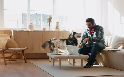 What to Know About Monitoring Remote Workers