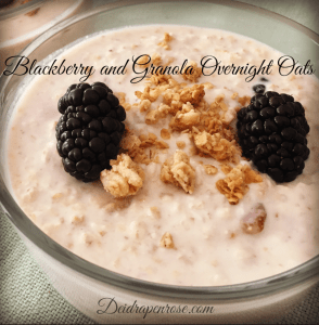 Over night oats, traill mix healthy, Deidra Penrose, clean eating tips, healthy snack recipes, healthy breakfast ideas, healthy mom, healthy nurse, almonds, cinnamon, dried cranberries, greek yogurt, almond milk, fresh blackberry recipe, pecans, healthy granola recipe, agave nectar, beachbody coach PA, online health and fitness coach, nutrition, weight loss journey