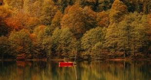 Saisonale Achtsamkeit: Der Herbst ist die Zeit des Loslassens