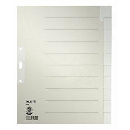 Esselte Leitz Papierregister Blanko, A4, Papier, 10 Blatt, grau -