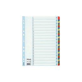Leitz 100164 Kartonregister 1-31, A4, Karton, 31 Blatt, weiss -