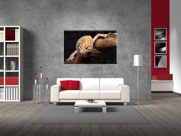 db_1743_gecko_couch-2