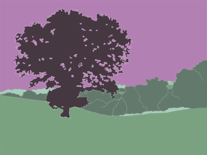 Ein idyllische, weitläufige Wiesenlandschaft mit großem Baum im Vordergrund