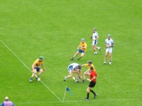 37 Waterford v Clare 17 June 2012