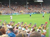 04 Waterford v Wexford 19 July 2014