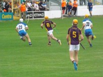 17 Waterford v Wexford 19 July 2014