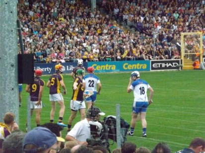 20 Waterford v Wexford 19 July 2014