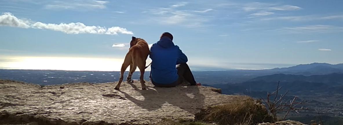 El niño y el cachorro