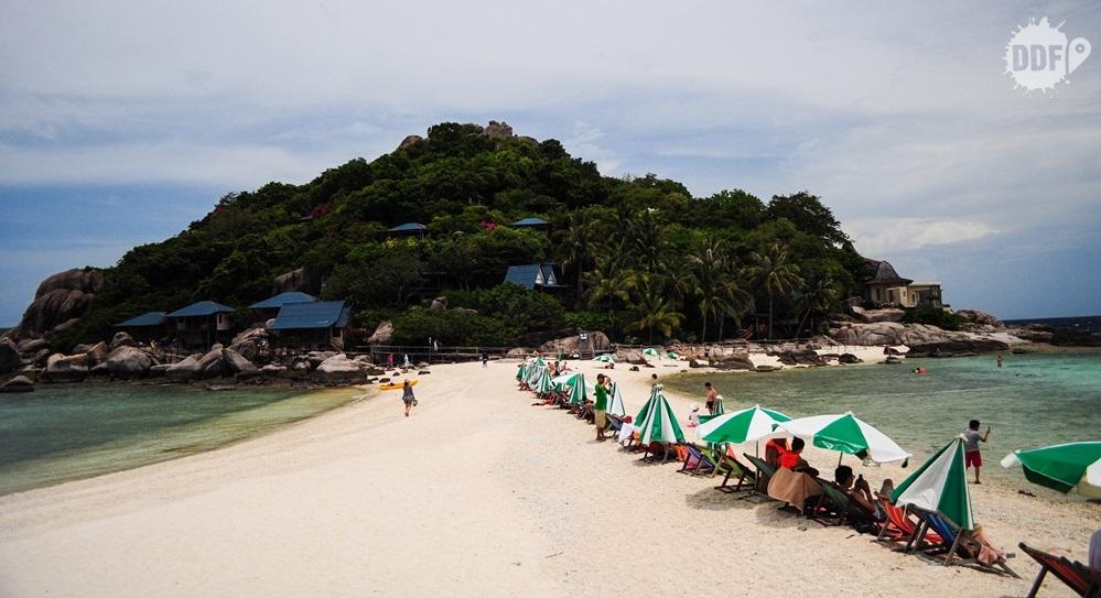 koh-nang-yuan-koh-tao-tailandia