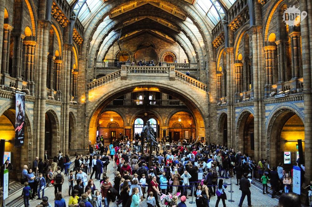 Londres-museus-gratis-natural-history-museum-historia-natural-inglaterra