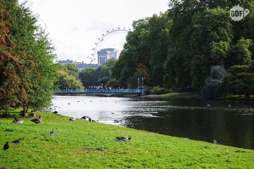 Londres-parques-reais-saint-james-park-london-eye-gratis-inglaterra