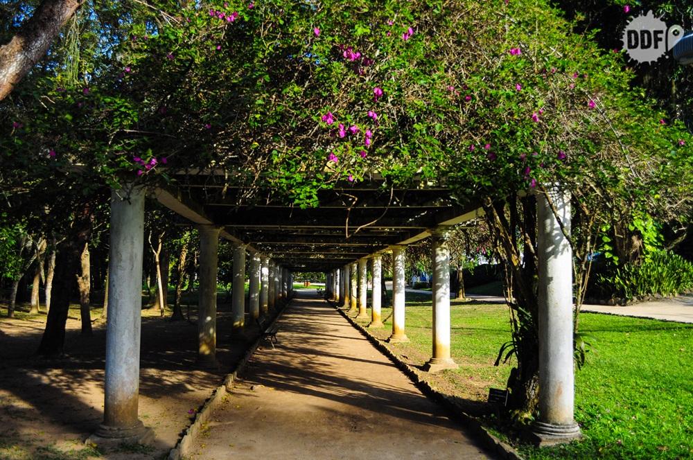 jardim-botanico-rio-de-janeiro-brasil-rotas-cariocas-passeio