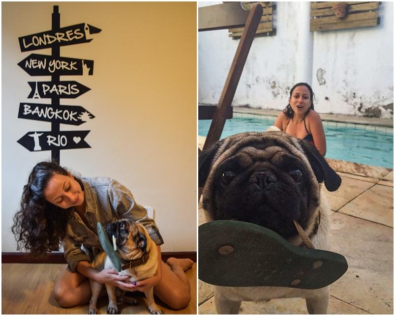 Niteroi-itacoatiara-itaquatiara-onde-ficar-hostel-itaquahouse-cachorro-mane