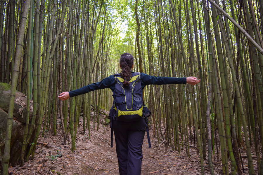 parnaso cachoeiras trilha circuito das bromelias bambuzal petropolis