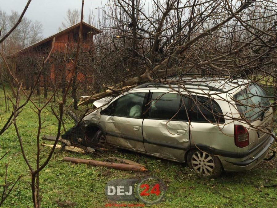 accident Somcutului masina in copac (6)