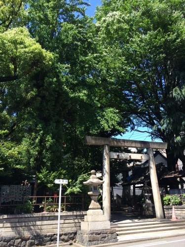 雰囲気のある神社