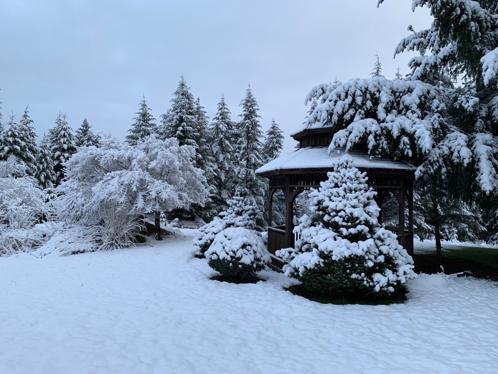 Snow on the brown gazebo