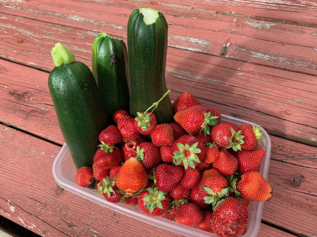Zuccini and strawberries