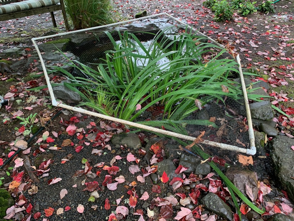 Cover over small pond