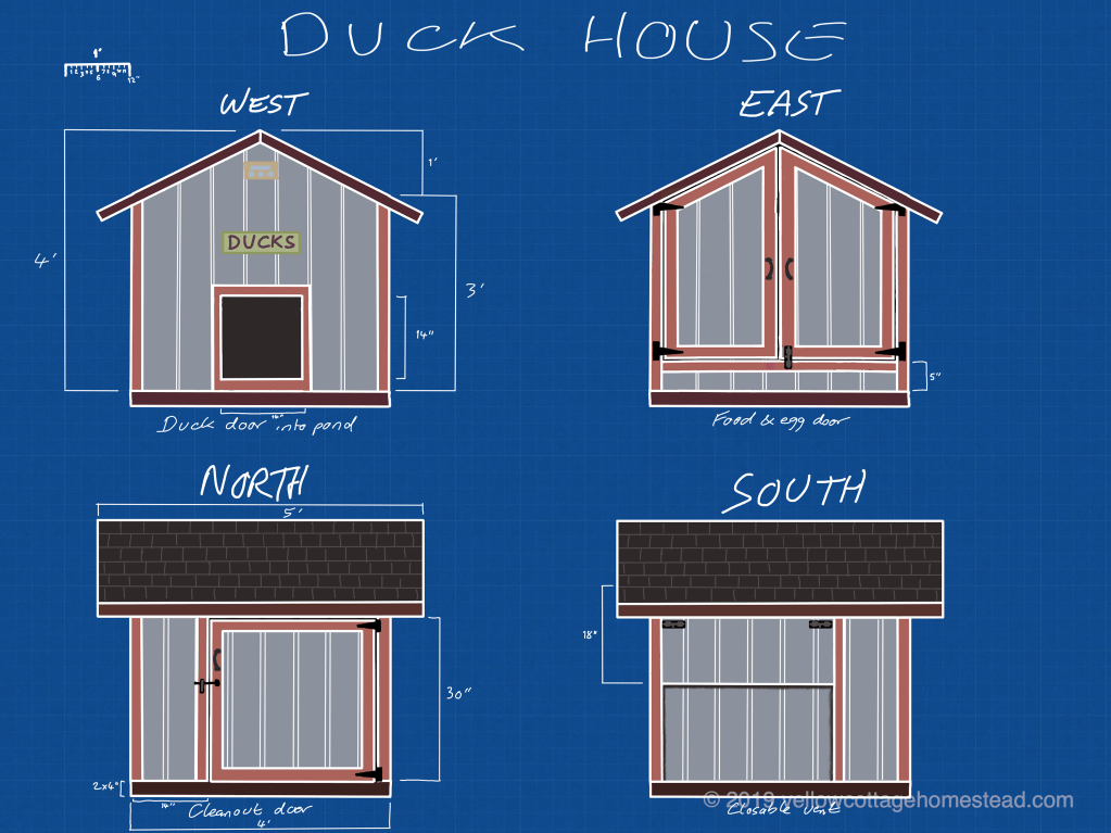 Duck house design
