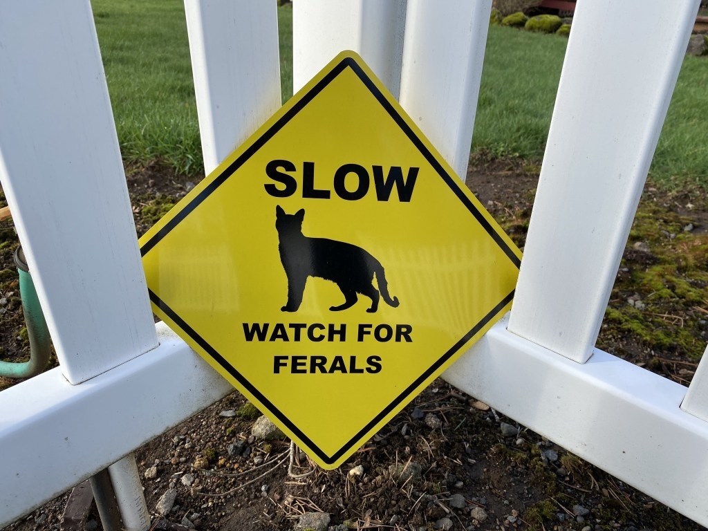 Watch for ferals sign