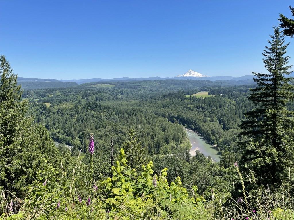 Jonsrud Viewpoint