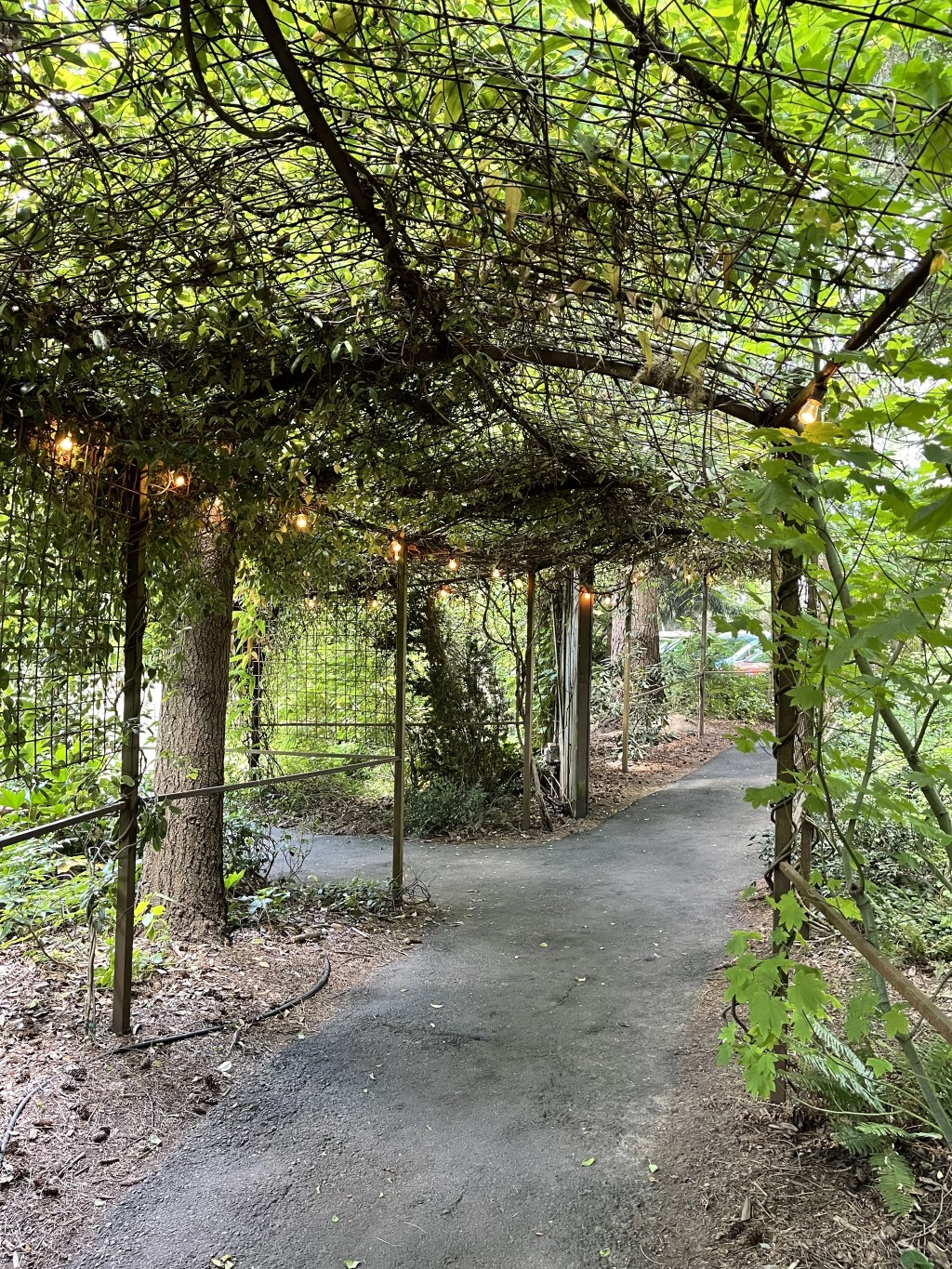 Covered pathway