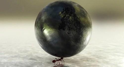 Parábola da demissão da formiga desmotivada: