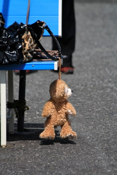 Teddy Bear commited suicide... couldn't save him...