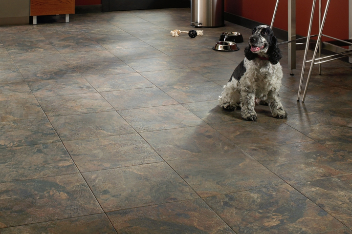 pet friendly flooring guide for your dog