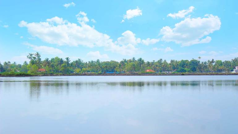 North Paravur - Muziris Heritage Site_Backwater