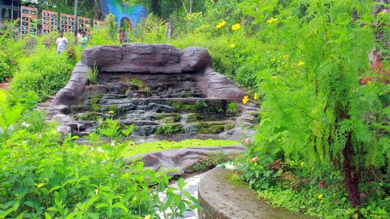Thattekad Bird sanctuary - Dr Salim Ali Bird Sanctuary_Butterfly park, Thattekkad Bird Sanctuary