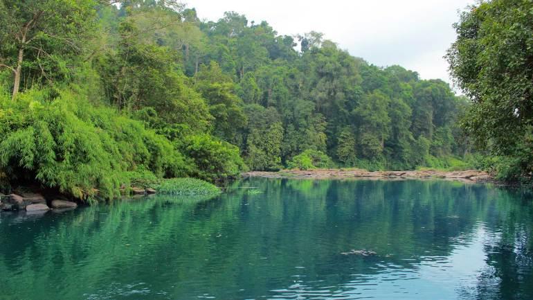 Vadattupara-River_Forest