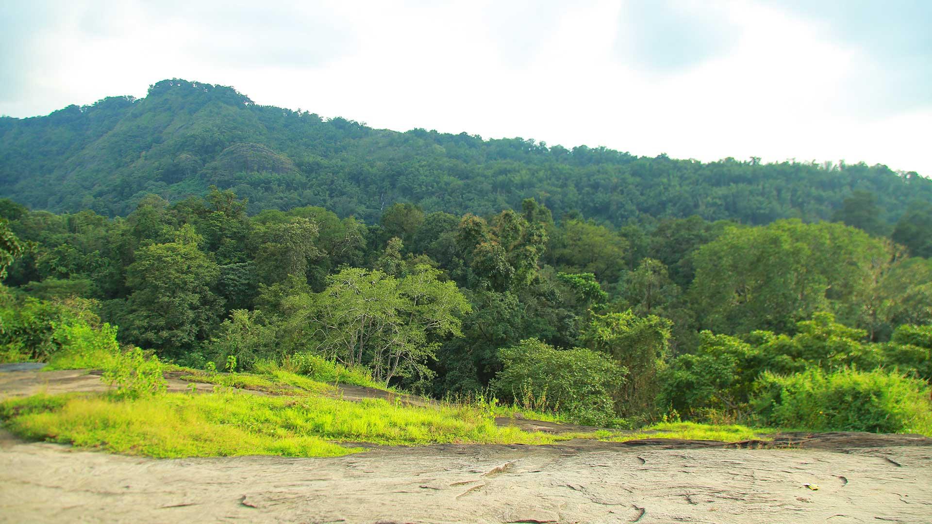View-of-Western-Ghats-from-aali-veena-kuthu-hills, Aali Veena Kuth