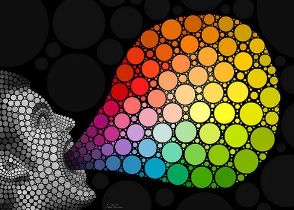 renklerin dili