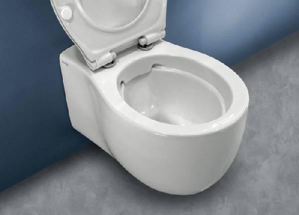 Çerçevesiz tuvalet, fotoğraf 1