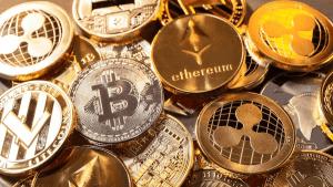 Zijn spaarzegeltjes van de Delhaize de nieuwe Bitcoin? Wij zochten het uit