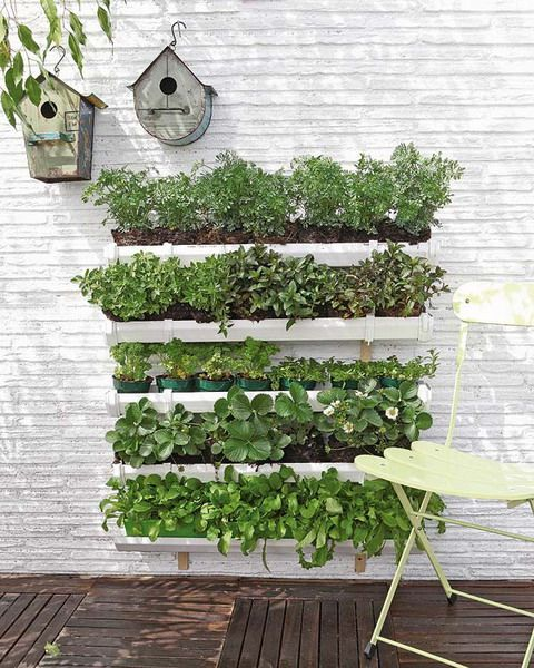 dekoruma DIY Vertical Garden - photo from diy-enthusiasts (6).jpg