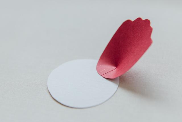 DIY Bunga Peoni Kertas 09.jpg