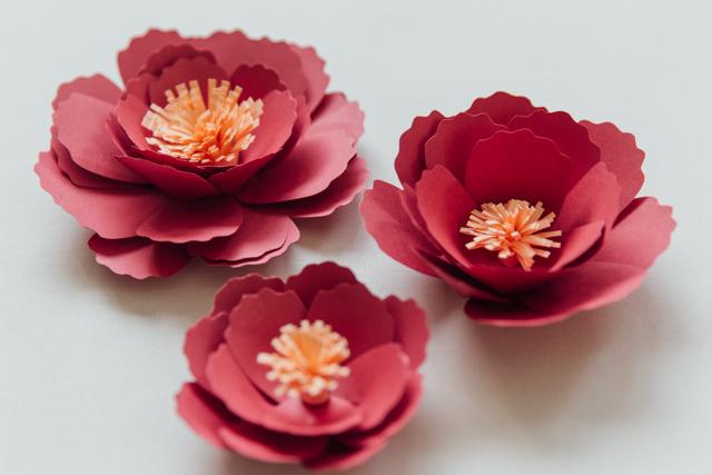 DIY Bunga Peoni Kertas 19.jpg