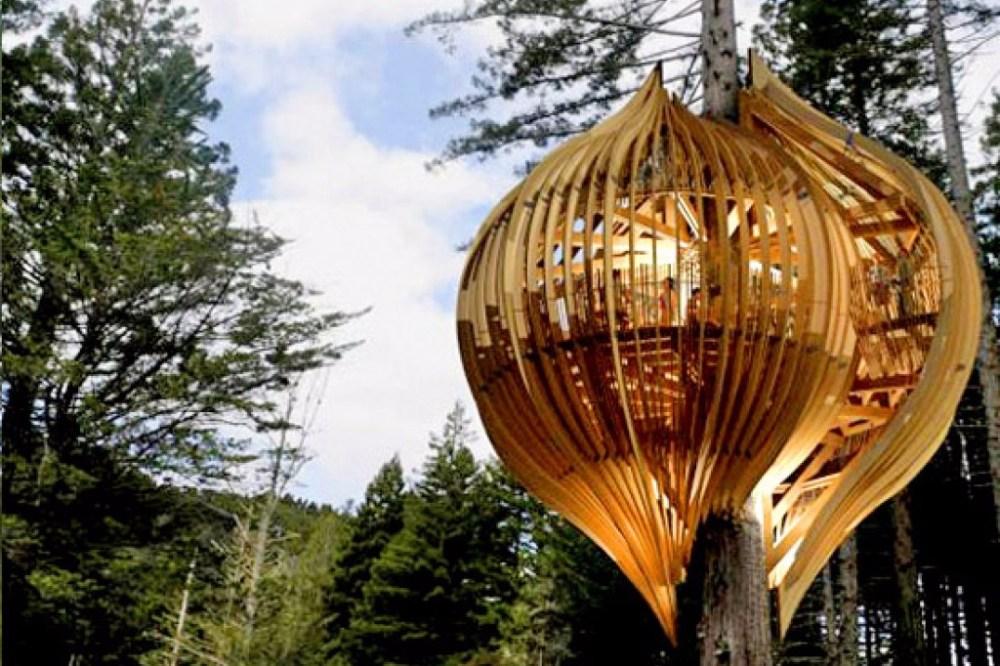Rumah Pohon Kepompong