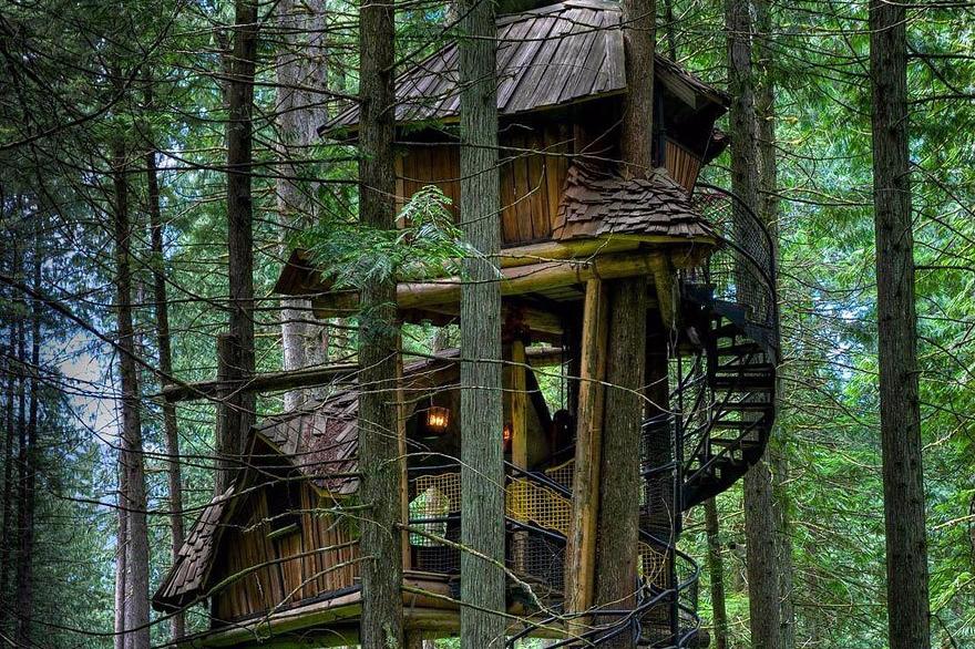 Rumah Pohon Tingkat Tiga